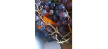 Grapes (500g) Black magic- Spain