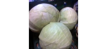 Cabbage White (700g) Ireland